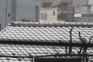 Tokyo_snow